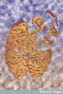 Brain falling apart into sky - an artwork by Heidi Cartwright.